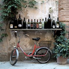 seems like a good place to park your bike ;) #wine #bicycle,  el lugar perfecto