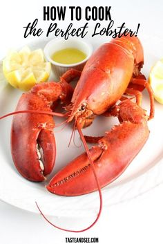 Boiled Lobster With Drawn Butter Is Sooo Easy To Make De-Mystify The Question Of How To Cook Live Lobster This Guide To Boiled Lobster Will Break It Down For You And Turn You Into A Crustacean-Taming, Seafood Loving, Lobster-Master. Lobster Boil, Lobster Dinner, Live Lobster, Cooked Lobster, Fish Dishes, Seafood Dishes, Fish And Seafood, Shellfish Recipes, Seafood Recipes