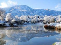 Invierno reflejado en el río