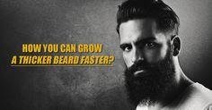 How You Can Grow A Thicker Beard Faster? https://royalbeardclub.com/beards/how-to-grow-a-beard/grow-thicker-beard-faster/?utm_source=Beard%20Oil%20Beard%20Growth%20&%20Beard%20Care%20Tips%20At%20Royal%20Beard%20Club&utm_medium=feed&utm_campaign=OneFeedSC