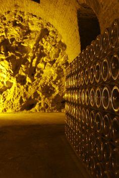 Maison Deutz : l'excellence champenoise Caves, Champagne Deutz, Sombre, Wine Cellar, Vine Yard, Roots, Italy, Lush, Blanket Forts