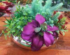 http://www.elo7.com.br/suculentas-em-vaso-vietnamita-4/dp/69A1B0