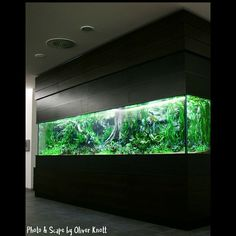 5 meter tank by Oliver Knott