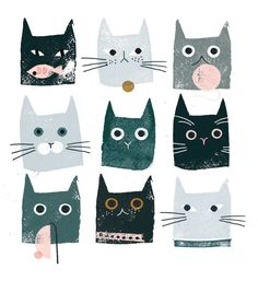 Cats - CO256