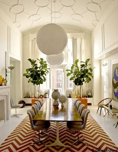 Fiddle Leaf Fig: Easy on the eyes, tricky on the care