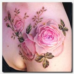 Body – Tattoo's – It was an honor to make this Alessandra's first tattoo. She wanted Jane Aust Best Body – Tattoo's – It was an honor to make this Alessandra's first tattoo. She wanted Jane Aust… Body Art Tattoos, New Tattoos, Sleeve Tattoos, Tattoo Arm, Tattoo Feather, Irish Tattoos, Star Tattoos, Lion Tattoo, Skull Tattoos