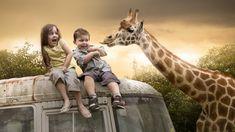 Affectionate Giraffe by Karen Alsop - Story Art