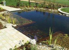 Enjoying Your Garden this Summer: Natural Swimming Pools Ideas