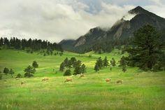 Nature at it's best. Boulder, CO