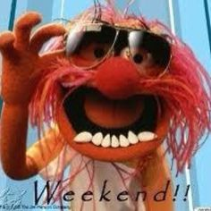My favourite Muppet. Perfect for a weekend! #weekend #Muppets #animal