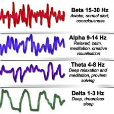 Image result for theta-brain-wave
