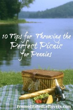 Frugal Picnic Ideas - 10 Tips for Throwing the Perfect Picnic for Pennies