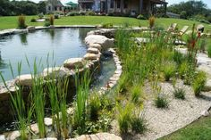 Natural pools: Ultimately it's the shape of the pool basin, materials and expression of the edges that will determine the style of your natural pool. I recommend that you hire a talented landscape architect who can incorporate a natural pool into an overall backyard-oasis design plan.