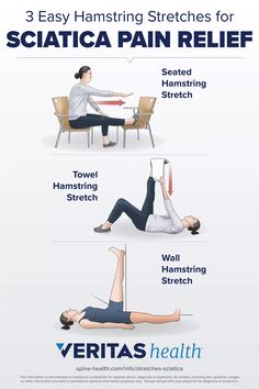 Hamstring Stretching Exercises, Seated Hamstring Stretch, Sciatica Stretches, Sciatica Symptoms, Sciatica Pain Relief, Back Pain Relief, Hamstring Workout, Flexibility Workout, Lower Back Pain Stretches