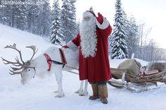 La Laponie – le pays des rennes du Père Noël