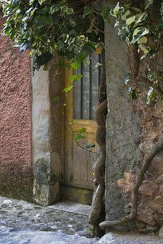 Doorway & Ivy, Provence by Rita Crane Photography Cool Doors, Unique Doors, Portal, Entrance Doors, Doorway, Door Knockers, Door Knobs, Villa Del Carbon, La Provence France
