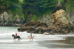 Muir Beach will be hard to reach this summer as environmental work proceeds - Marin Independent Journal