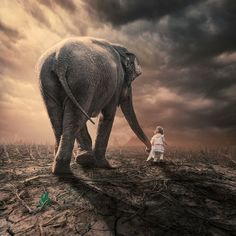 Elephant and Girl - Surreal Photo Manipulation by Caras Ionut
