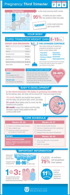 Facts about the third trimester of pregnancy | University of Utah Health Care #pregnancy