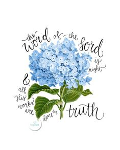 "Scripture Art Hydrangeas Hope Ink ""The Word of the Lord is right and all His works are done in truth"" -Psalm Bible verse Old Testament Scripture floral art flower hydrangea images jesus Word — Hope Ink Bible Art, Bible Verses Quotes, Bible Scriptures, Bible Psalms, Healing Scriptures, Wallpapers Gospel, Psalm 33, Proverbs 31, Words Of Hope"