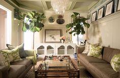 Fiddle Leaf Fig Tree. chloe warner Fiddle Leaf Fig Tree, Fiddle Fig, Indoor Fig Trees, Indoor Plants, Indoor Gardening, Home Interior Accessories, Interior Architecture, Interior Design, Long Sofa