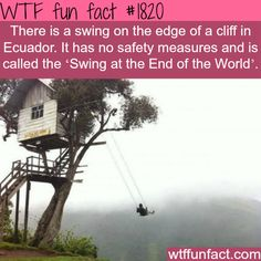 The scariest swing? -WTF fun facts