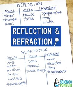 Academic Vocabulary, Vocabulary Activities, 5th Grade Science, Elementary Science, Reflection And Refraction, Science Centers, Nouns And Verbs, Making Connections, Science Lessons