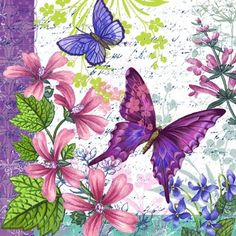 Medium - butterfly print