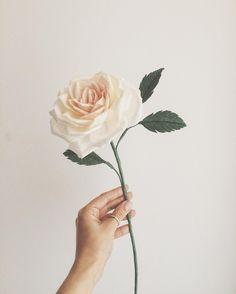 Book review the exquisite book of paper flowers diy paper rosa de jardim jardim de papel em breve na loja flores avulsas para alegrar mightylinksfo