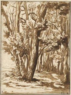 NicolasPoussin (Fr. 1594-1665),Paysage: arbres à demi morts en bordure d'un bosquet, dessin (encre brune,lavis brun, pierre ...