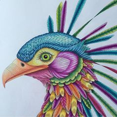 By @dishnspoon #arttherapy #mandala #milliemarottafans #coloringbook #coloringforadults #instacolor #art #drawing #painting #coloring #milliemarotta #tropicalwonderland #animalkingdom #wildsavannah