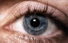 How to Insert, Remove, and Handle Rigid Gas Permeable Contact Lenses