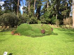 Artist Ponti On Pinterest Topiaries Totems And Sleeping Babies