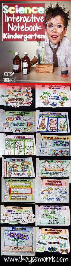 Science Interactive Notebook  www.kaysemorris.com https://www.teacherspayteachers.com/Product/Science-Interactive-Notebook-1975691