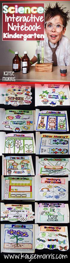 Science Interactive Notebook  www.kaysemorris.com https://www.teacherspayteachers.com/Product/Science-Interactive-Notebook-1975691