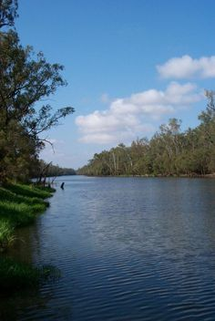 Marine Environments Waterways (Weir on Dawson River Theodore)
