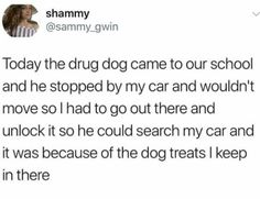 Shit that didn't happen for 500 please. Drug dogs are highly trained working dogs that know when it's time to work and when it's time to be a dog. At no point would a trained drug dog, when working, alert on dog treats. They train for literal hours with food distractions among other distractions to prevent situations like this. This would never happen.