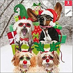 5 Marie Curie Charity dog doggy Christmas Greeting Cards