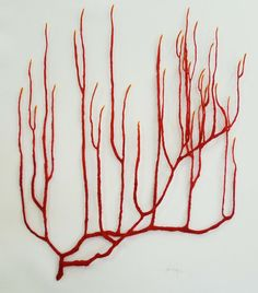 Red Coral Branch, 2010. Embroidery thread on paper by Meredith Woolnough.
