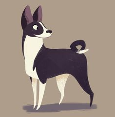 238: Basenji (Dog Week, day 5) One of my friends suggested this breed to me for today's drawing, I'd never heard of them before! They're super cute and yodel instead of bark.                                                                                                                                                     More