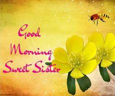 Looking for Good Morning Wishes for Sister? Start your day by sending these beautiful Images, Pictures, Quotes, Messages and Greetings to your Sis with Love. Good Morning Sister Images, Good Morning Bible Quotes, Romantic Good Morning Quotes, Good Morning Cards, Funny Good Morning Quotes, Good Morning Texts, Good Morning Flowers, Good Morning Friends, Good Morning Messages
