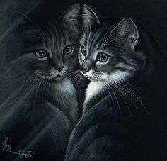 Her works Iriny Garmashovoy (Irina Garmashova) photos) I Love Cats, Cool Cats, Image Foto, Image Chat, Scratch Art, Photo Chat, All About Cats, Cat Tattoo, Cat Drawing