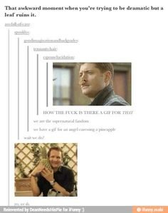 We are the supernatural fandom, we have a gif of an angel caressing a pineapple