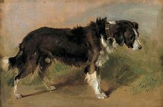 'A Border Collie' by Thomas Sidney Cooper, English painter, Border Collie Art, English Shepherd, Rough Collie, The Fox And The Hound, Art Uk, Watercolor Animals, Dog Portraits, Animal Paintings, Dog Art