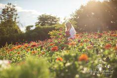 #farmerflorist #flowerfield  Dahlia May Flower Farm Zinnia field in August. Photo by @AshleySlessor