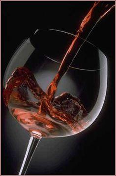 La Cantina di Firenze ha aperto la sua vendita vino sfuso online, vieni a trovarci su http://www.worldwildwine.it/