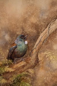 Carol Theologo Artists, Bird, Artwork, Painting, Animals, Animales, Work Of Art, Animaux, Painting Art