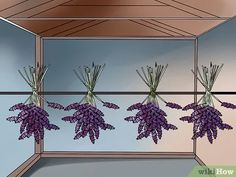 How to Make Essential Oils. Essential oils are highly concentrated oils extracted from aromatic plants such as lavender and rosemary. About 700 different types of plants contain useful essential oils, and there are several methods used to. Essential Oil Still, Making Essential Oils, Essential Oils Guide, Homemade Body Care, How To Make Oil, Carrier Oils, Succulents Diy, Types Of Plants, Tea Tree Oil