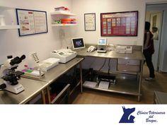 VETERINARIA DEL BOSQUE. En nuestro laboratorio de análisis clínicos podemos saber en minutos si tu mascota padece alguna enfermedad en la sangre. También, somos capaces a través del estudio de heces fecales de detectar parásitos o huevos de los mismos como parvovirus canino, SIDA felino, leucemia viral felina, gusano de corazón o pancreatitis. En Veterinaria del Bosque, entregamos resultados de manera inmediata para comenzar con el tratamiento. #especialistasencuidadodemascotas