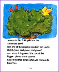 Young children will enjoy reading this story about Jesus' parable of the mustard seed - 'A Tiny Seed and a Big Tree'. Sunday School Classroom, Sunday School Lessons, Lessons For Kids, Bible Lessons, Classroom Ideas, Church Activities, Bible Activities, Mustard Seed Parable, Kids Church